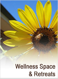 wellness space and retreats